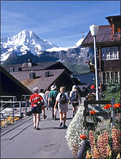 Hiking vacations for seniors are improved with trekking poles.