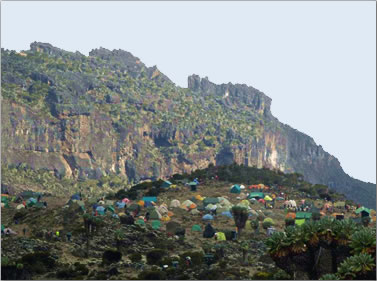Mt Kilimanjaro trekking tours Tanzania stay in tent camps along the route.