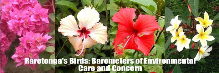Rarotonga's Birds: Barometers of Cook Islands Environmental Health and Concern.