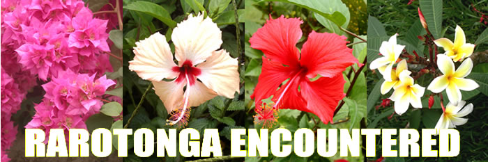 Rare bird and flower pictures are ingredients of Rarotonga, Cook Islands vacations.