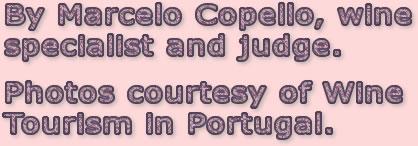 Marcelo Copello wine tasting tips.