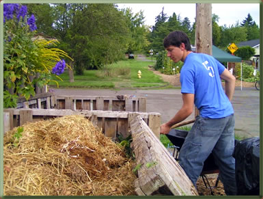 Volunteer in an organic garden in Oregon.