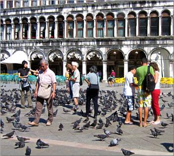 St Mark's Square: educational travel Venice Italy.