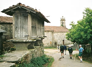 Henry Maloney walks the Camino de Santiago