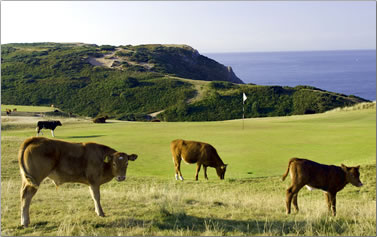 One of 200 golf courses in Wales.