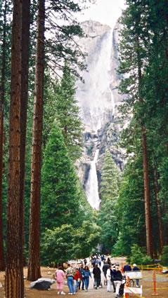 Nature vacations in California Yosemite National Park.