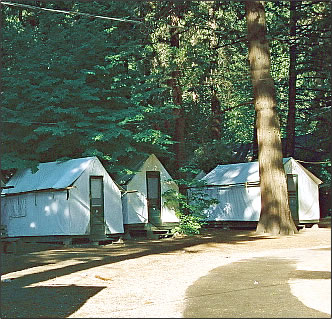 Tent-cabin accommodation in Yosemite National Park camping holiday in California.