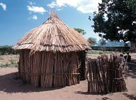 Zulu farm in South Africa.