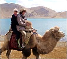 Bestway Tours Silk Road camel.