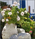 Article about senior solo travel on the Greek Island of Folegandros.