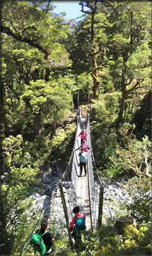 One of many suspension bridges on New Zealand's Milford Track.
