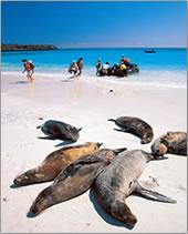 Metropolitan Touring's Galapagos Island eco-cruises in Ecuador.