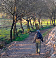 Pilgrim walking the Camino de Santiago, Northern Spain with Marly Camino Tours.