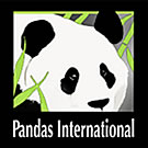 Pandas International logo, volunteer vacations in China to help conservation of the Giant Panda.