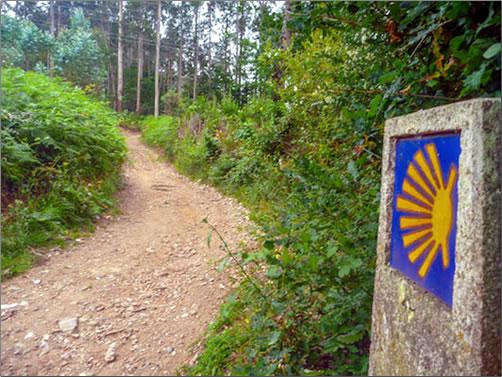 A path on the Camino Inglés between Ferrol and Santiago de Compostela.