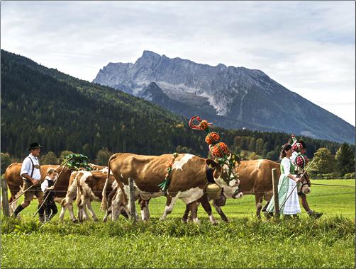 Bavaria-Harvest-Tradition