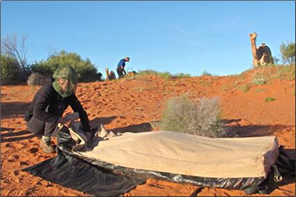 Australian-Outback-Camel-Trekking