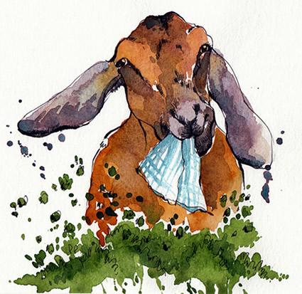 Goat-Eating-Laundry