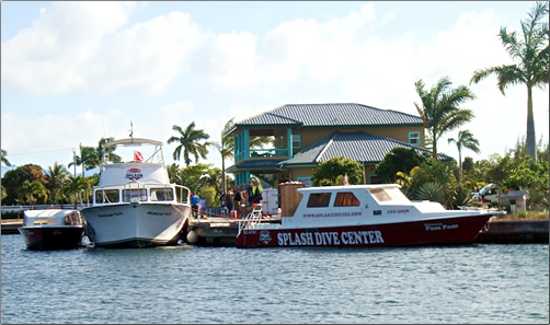 Belize-Cayes-Splash-Dive-Centre