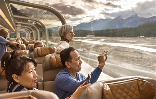 GoldLeaf-Service-Dome-Car