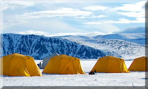Artic-Kingdom-Safari-Tents