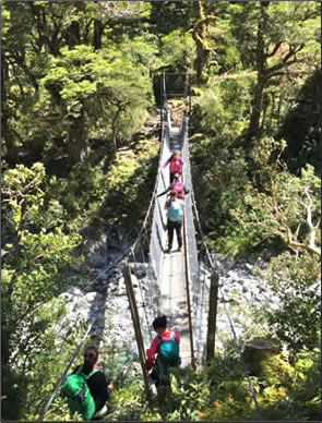 Milford-Track-Suspension-Bridge