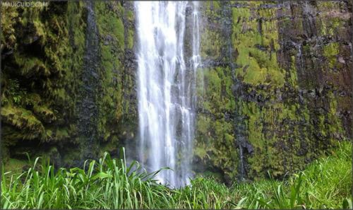 Waimoku-Falls-Maui