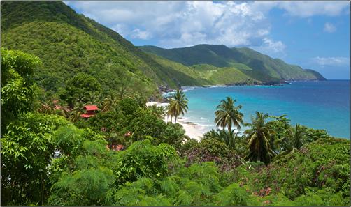 Ridge-to-Reef-Farm-Virgin-Islands