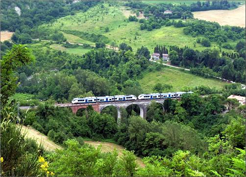 Train-Dante
